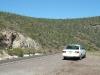 More cacti Mexico2005