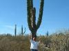 BIG Cactus  Mexico2005