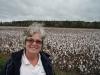Cotton field, North Carolina Nov 2008
