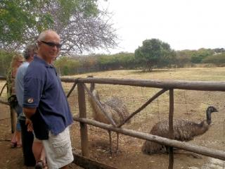 Ostrich Farm, Curacao