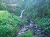Constantine Waterfall, Grenada