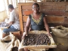 Nutmeg workers, Grenada
