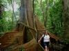 Nariva Swamp, Trinidad
